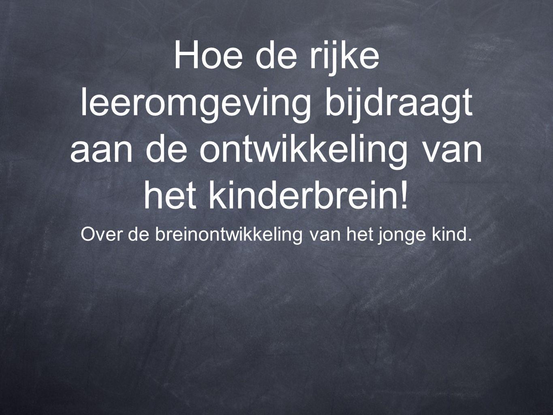 Hoe de rijke leeromgeving bijdraagt aan de ontwikkeling van het kinderbrein! Over de breinontwikkeling van het jonge kind.