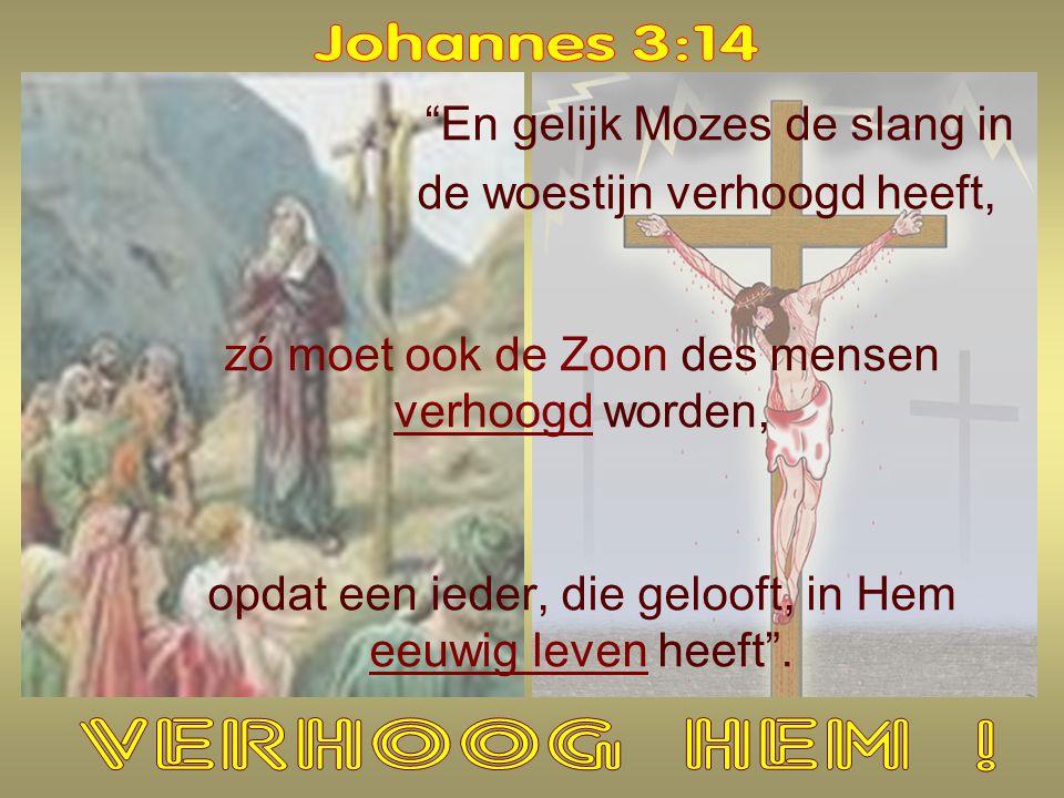 GELOOF WAT HET NIET IS : niet alleen l VERSTANDELIJK niet alleen l TIJDELIJK WAT HET WEL IS : l JEZUS aannemen als je Redder l Je vertrouwen stellen op HEM