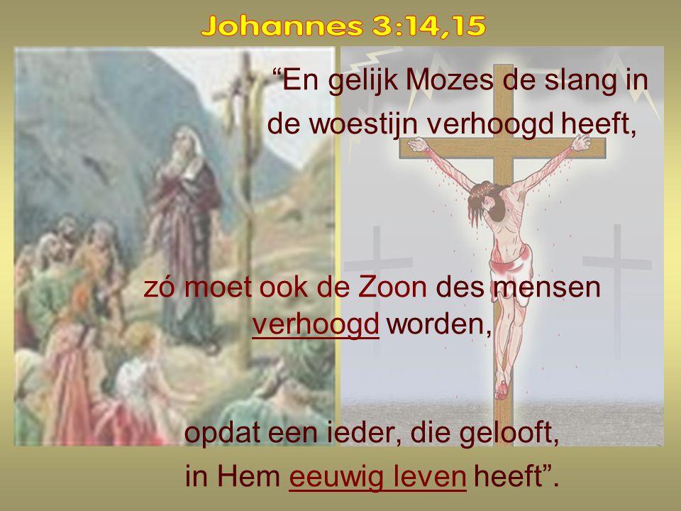 En gelijk Mozes de slang in de woestijn verhoogd heeft, zó moet ook de Zoon des mensen verhoogd worden, opdat een ieder, die gelooft, in Hem eeuwig leven heeft .