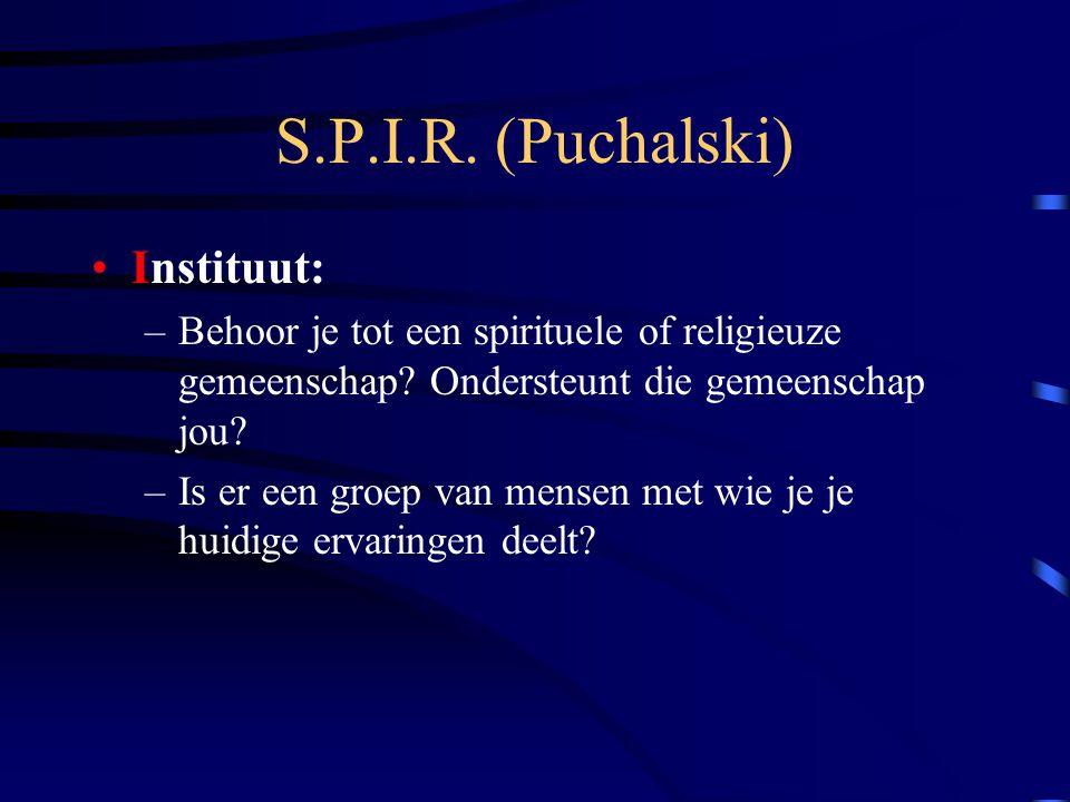 S.P.I.R.(Puchalski) Instituut: –Behoor je tot een spirituele of religieuze gemeenschap.