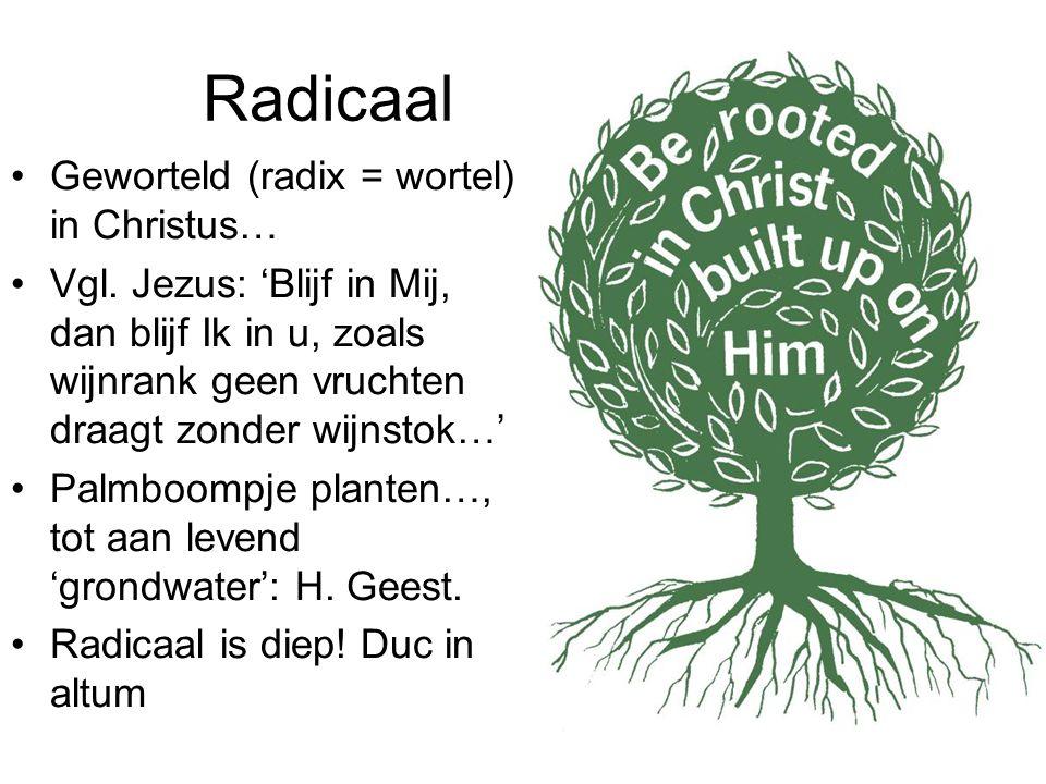 Radicaal Geworteld (radix = wortel) in Christus… Vgl. Jezus: 'Blijf in Mij, dan blijf Ik in u, zoals wijnrank geen vruchten draagt zonder wijnstok…' P