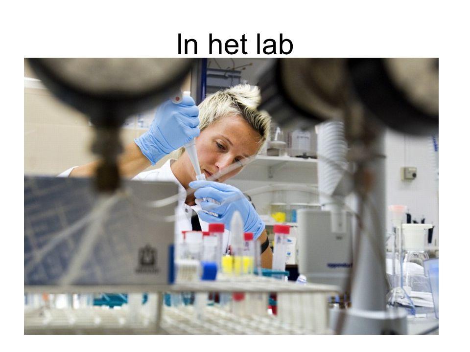 In het lab