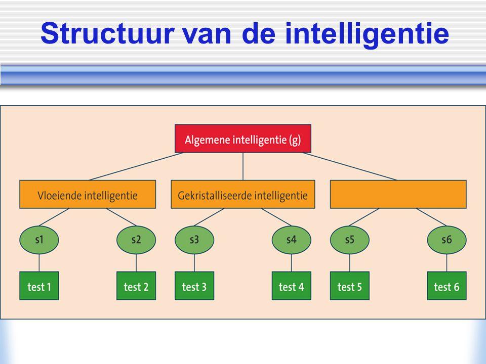 © Allyn & Bacon/ Longman 2007 Structuur van de intelligentie