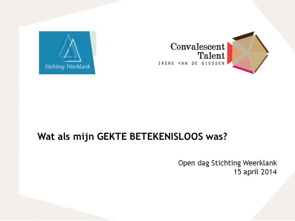 Wat als mijn GEKTE BETEKENISLOOS was? Open dag Stichting Weerklank 15 april 2014