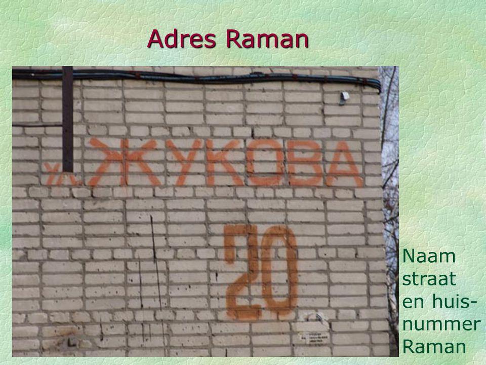 De straat vol putten Appartement van Raman