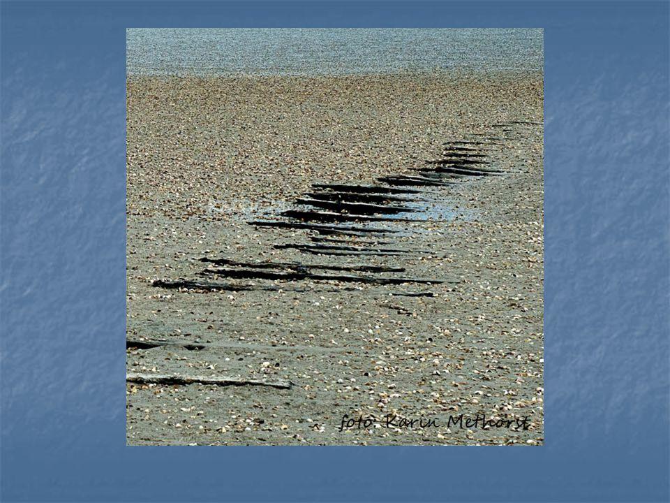 Innerlijke ruimte geestelijk verzorger Gevoelens komen vrij - - wezenlijke betrokkenheid - - - vrijheid - - - menselijkheid Innerlijke ruimte >>> Innerlijke warmte