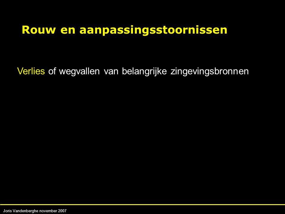 Joris Vandenberghe november 2007 Verlies of wegvallen van belangrijke zingevingsbronnen Rouw en aanpassingsstoornissen