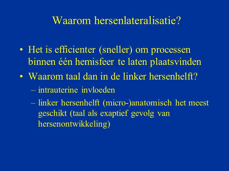 Waarom hersenlateralisatie? Het is efficienter (sneller) om processen binnen één hemisfeer te laten plaatsvinden Waarom taal dan in de linker hersenhe