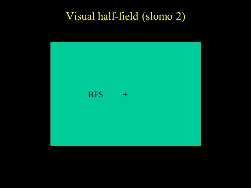 Visual half-field (slomo 2) +BFS