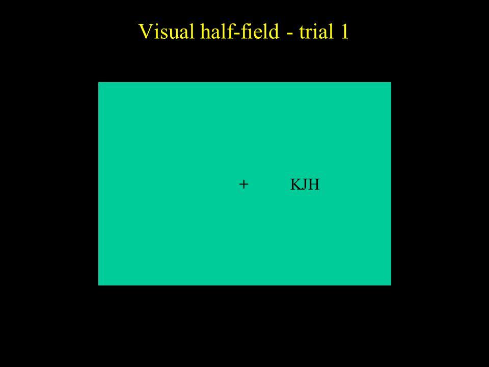Visual half-field - trial 1 +KJH