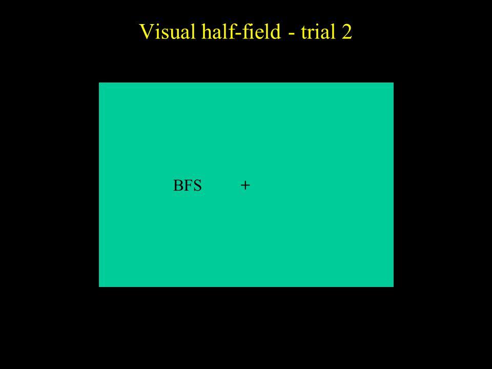 Visual half-field - trial 2 +BFS