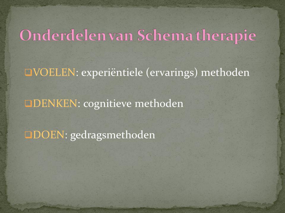 VOELEN: experiëntiele (ervarings) methoden  DENKEN: cognitieve methoden  DOEN: gedragsmethoden