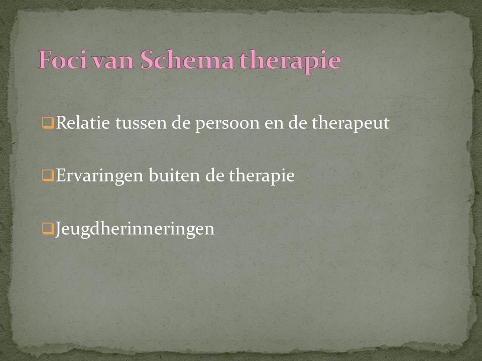  Relatie tussen de persoon en de therapeut  Ervaringen buiten de therapie  Jeugdherinneringen