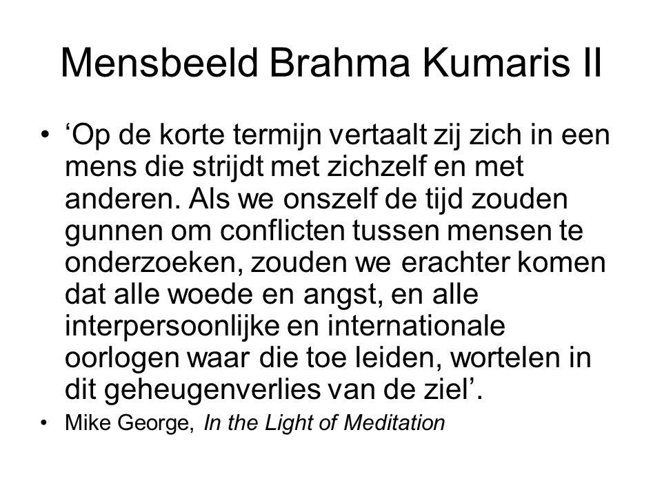 Mensbeeld Brahma Kumaris II 'Op de korte termijn vertaalt zij zich in een mens die strijdt met zichzelf en met anderen.