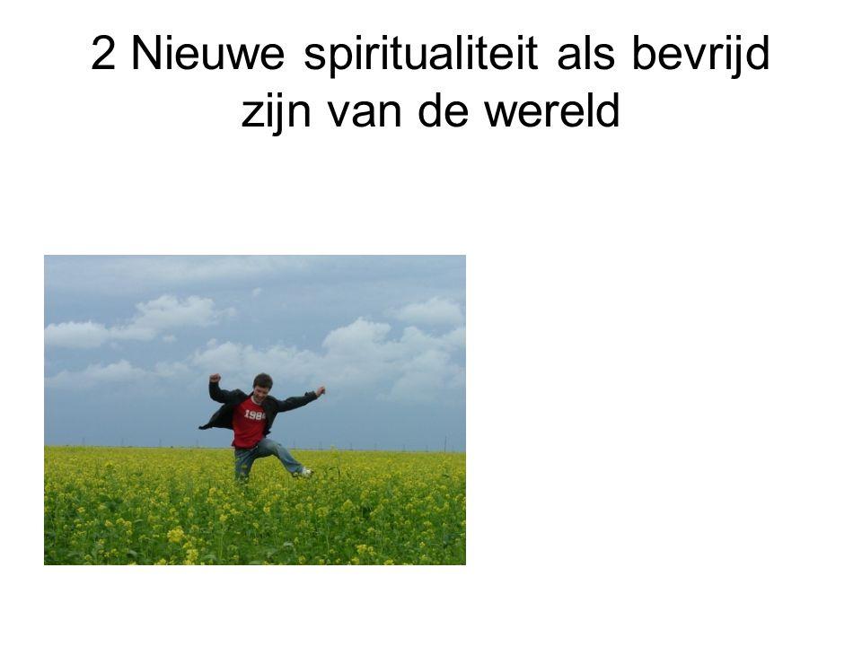 2 Nieuwe spiritualiteit als bevrijd zijn van de wereld