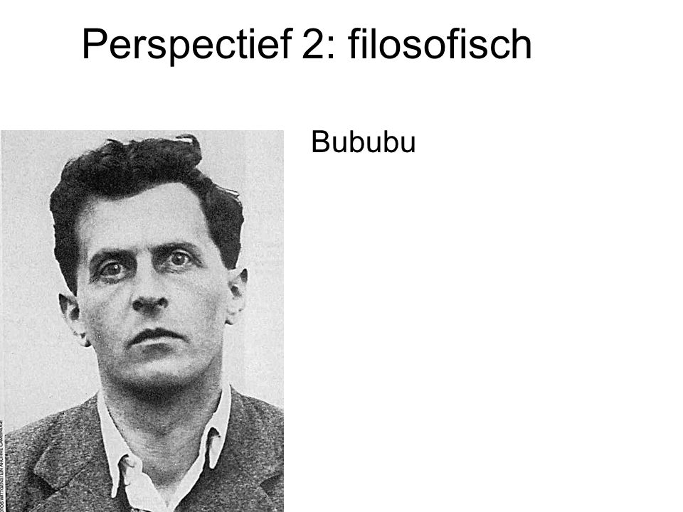 Perspectief 2: filosofisch Bububu