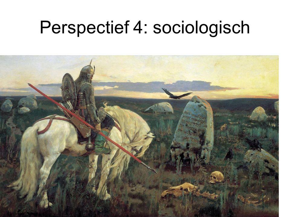 Perspectief 4: sociologisch