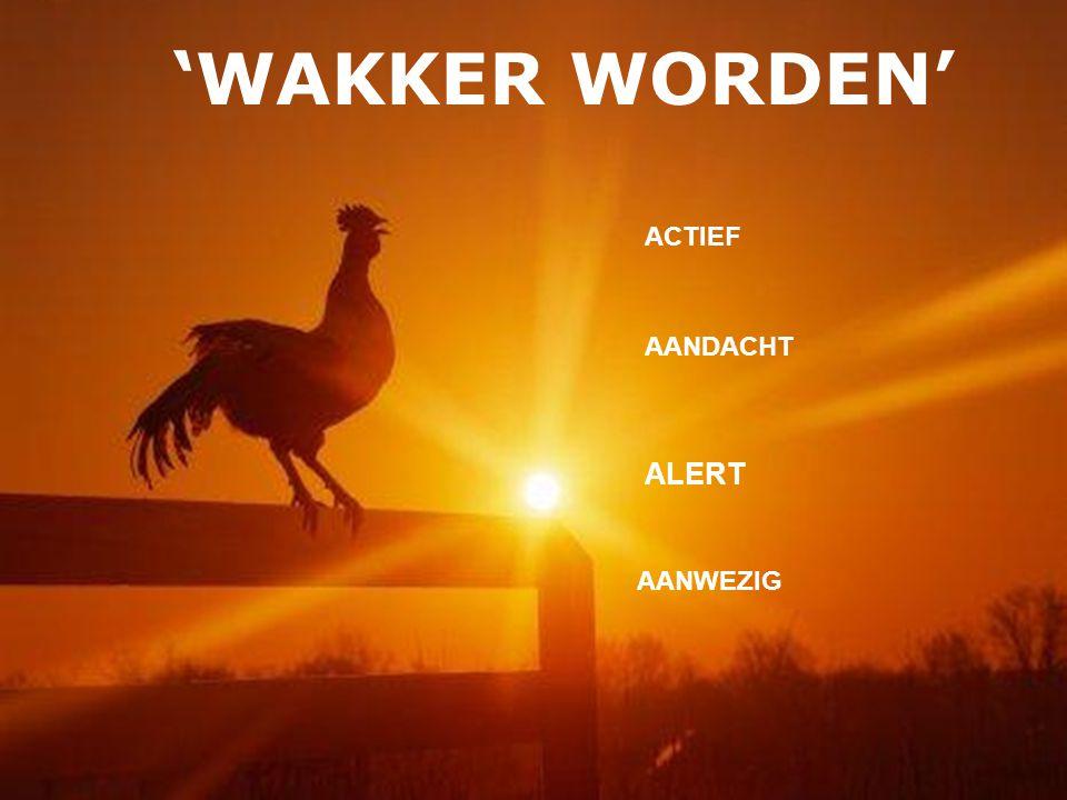 'WAKKER WORDEN' ALERT AANDACHT AANWEZIG ACTIEF