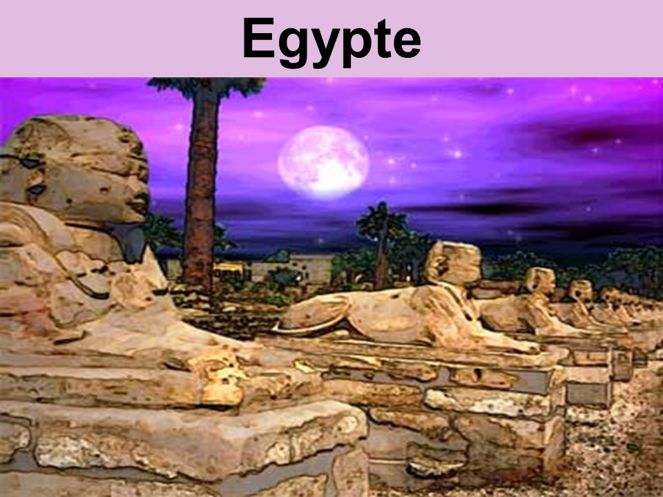 Dr Peet H Botha38 Egypte