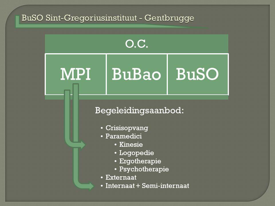 BuSO Sint-Gregoriusinstituut - Gentbrugge O.C. MPIBuBaoBuSO Begeleidingsaanbod: Crisisopvang Paramedici Kinesie Logopedie Ergotherapie Psychotherapie