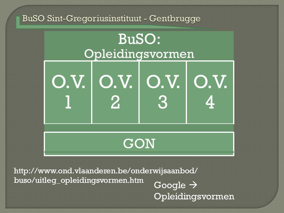BuSO Sint-Gregoriusinstituut - Gentbrugge BuSO: Opleidingsvormen O.V. 1 O.V. 2 O.V. 3 O.V. 4 http://www.ond.vlaanderen.be/onderwijsaanbod/ buso/uitleg