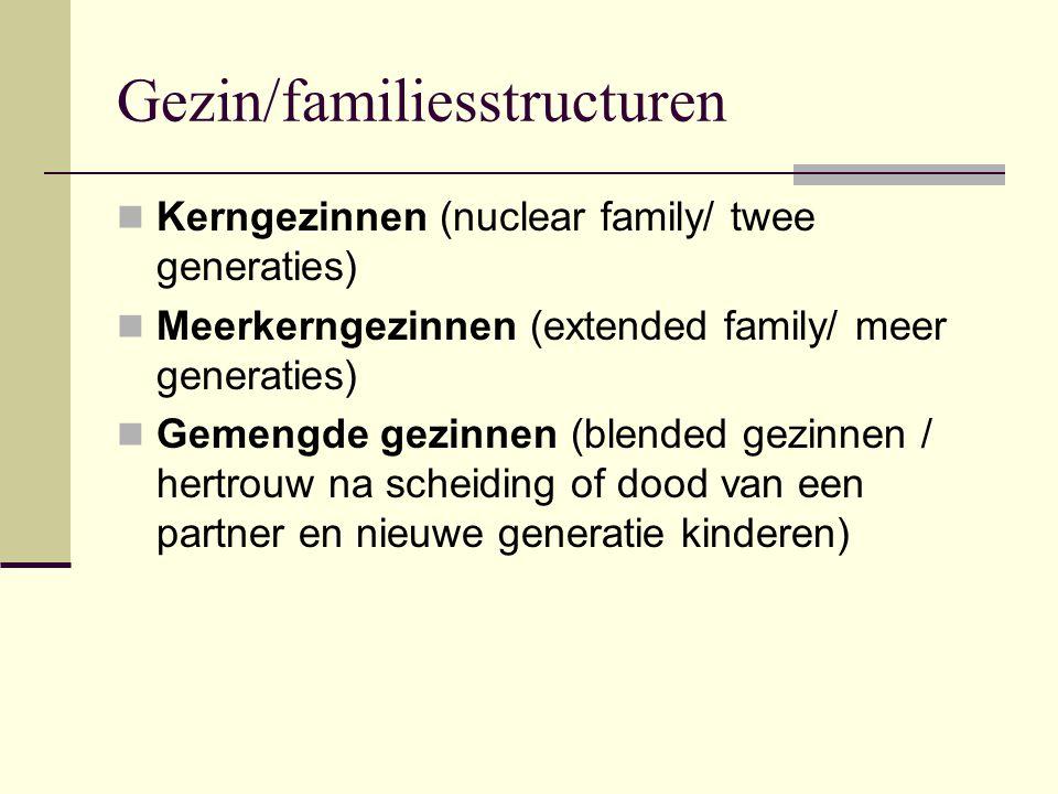 Gezin/familiesstructuren Kerngezinnen (nuclear family/ twee generaties) Meerkerngezinnen (extended family/ meer generaties) Gemengde gezinnen (blended gezinnen / hertrouw na scheiding of dood van een partner en nieuwe generatie kinderen)