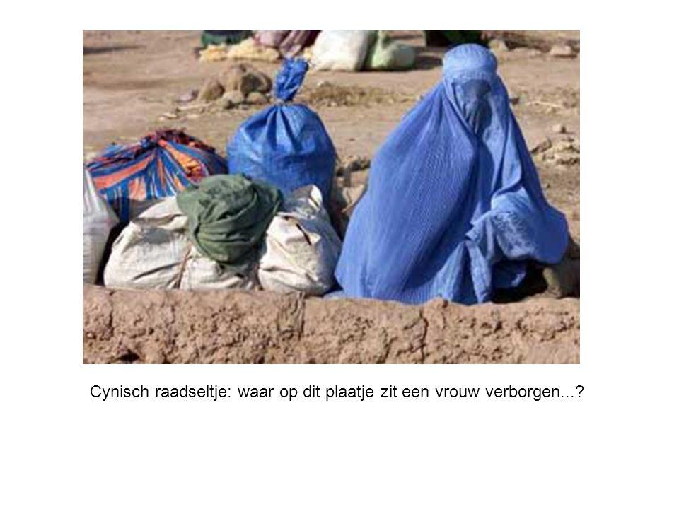 Cynisch raadseltje: waar op dit plaatje zit een vrouw verborgen...?