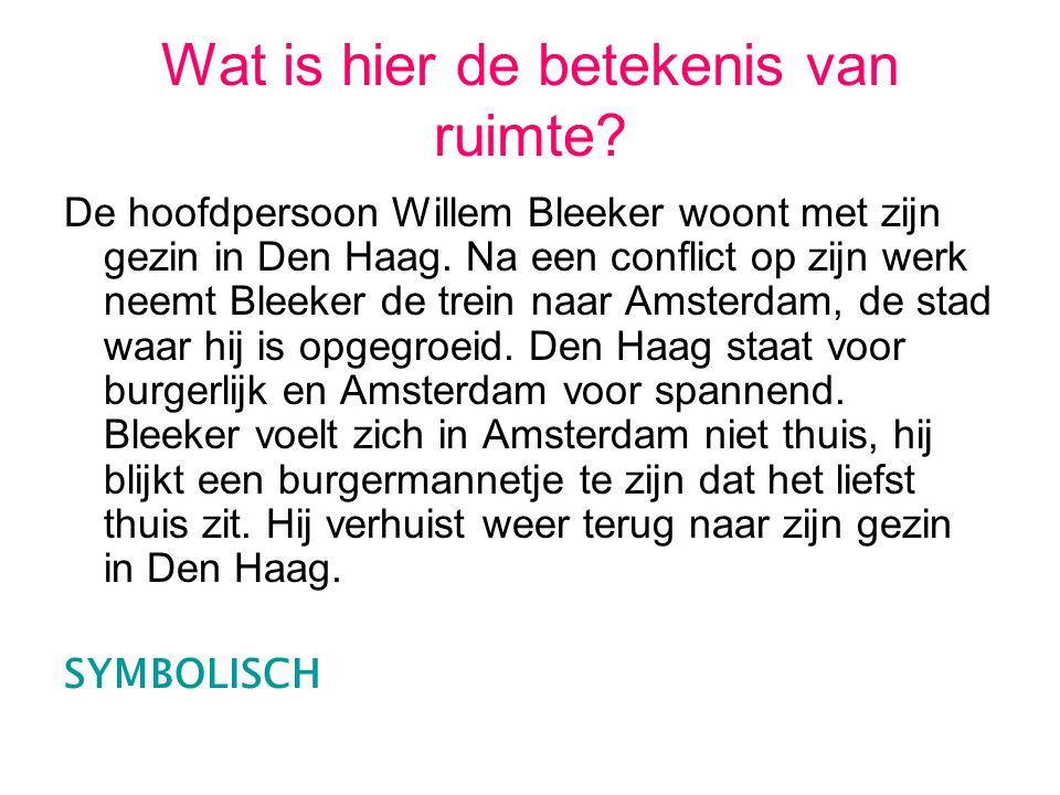 Wat is hier de betekenis van ruimte? De hoofdpersoon Willem Bleeker woont met zijn gezin in Den Haag. Na een conflict op zijn werk neemt Bleeker de tr