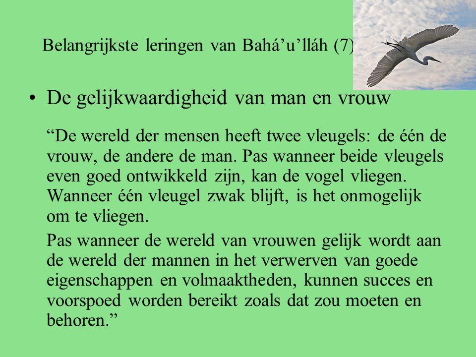 Belangrijkste leringen van Bahá'u'lláh (7) De gelijkwaardigheid van man en vrouw De wereld der mensen heeft twee vleugels: de één de vrouw, de andere de man.
