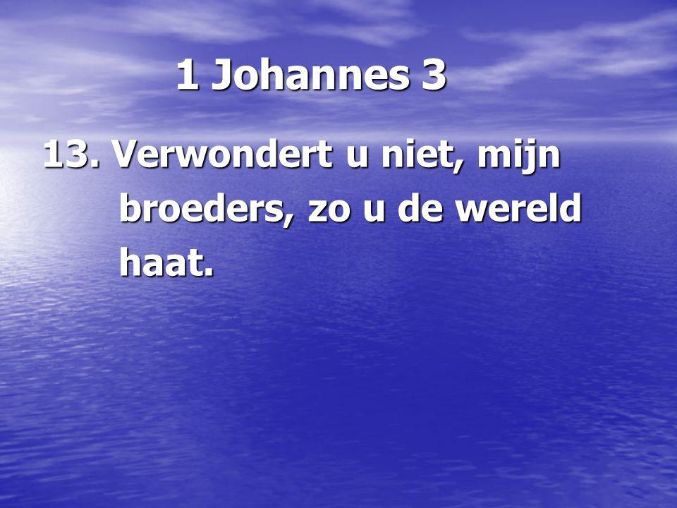 1 Johannes 3 1 Johannes 3 13.