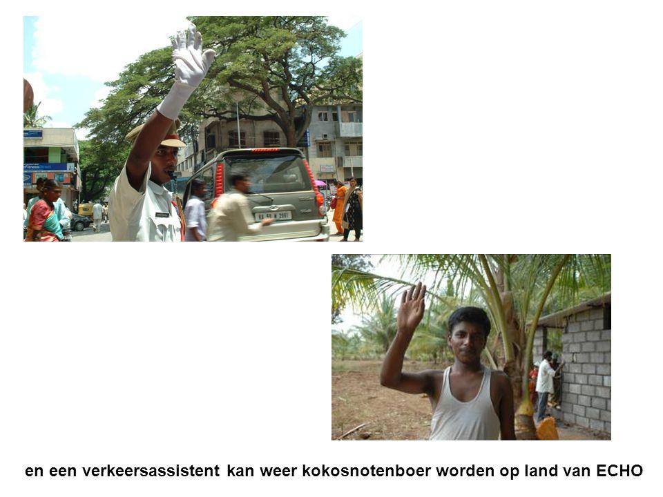 en een verkeersassistent kan weer kokosnotenboer worden op land van ECHO