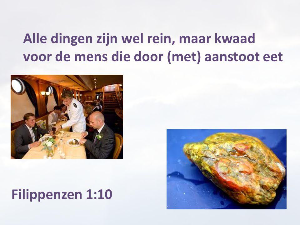 Alle dingen zijn wel rein, maar kwaad voor de mens die door (met) aanstoot eet Filippenzen 1:10