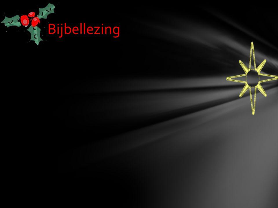 Bijbellezing
