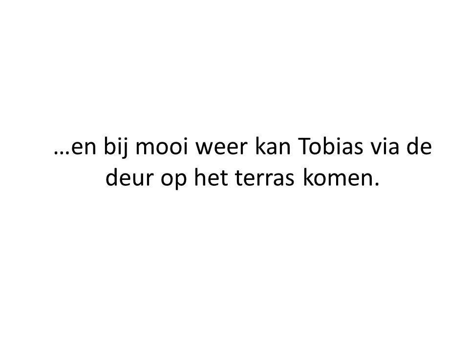 Doordeweeks is Tobias niet thuis: dan woont hij ergens anders.