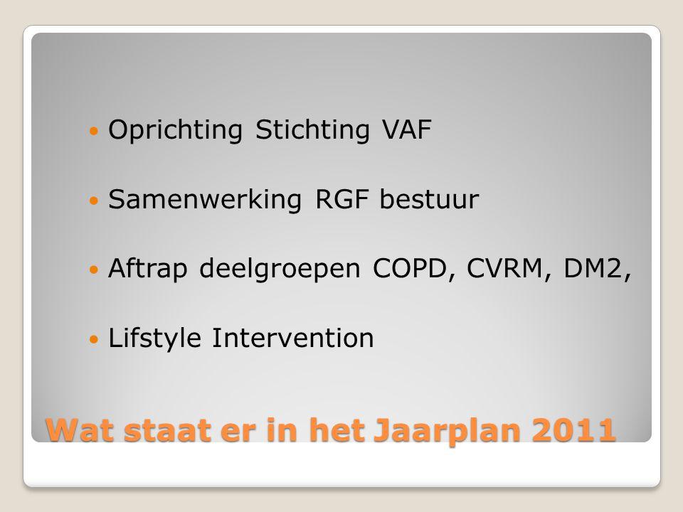 Wat staat er in het Jaarplan 2011 Oprichting Stichting VAF Samenwerking RGF bestuur Aftrap deelgroepen COPD, CVRM, DM2, Lifstyle Intervention