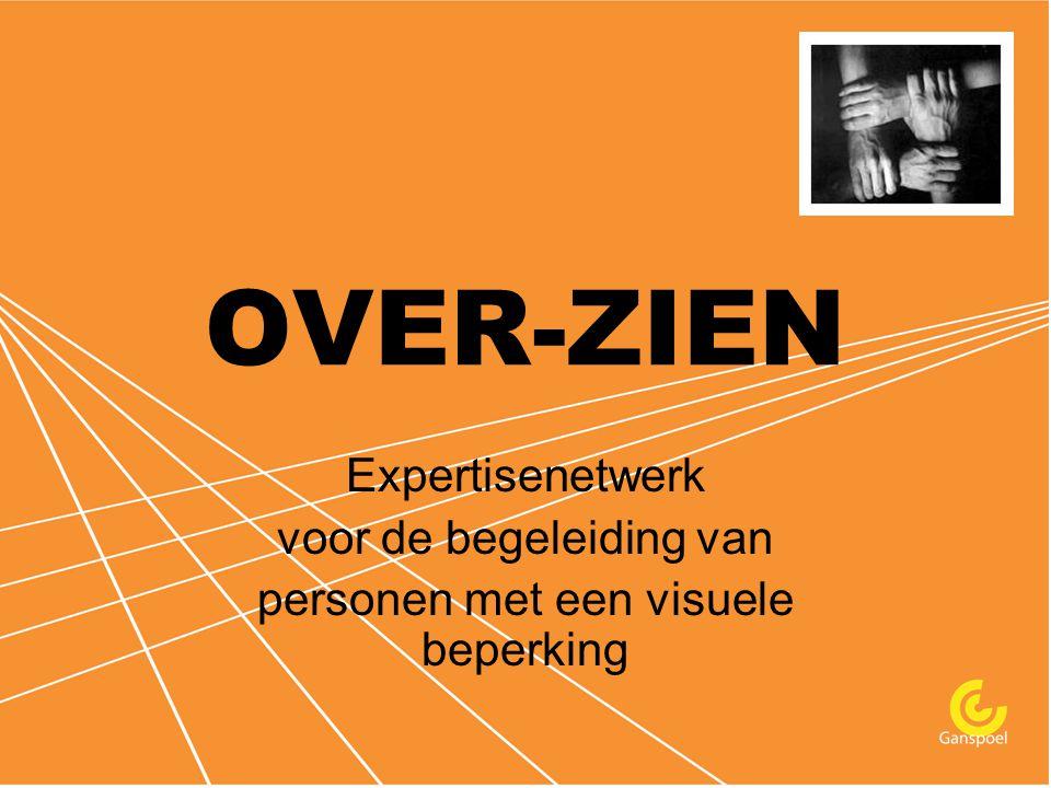 OVER-ZIEN Expertisenetwerk voor de begeleiding van personen met een visuele beperking