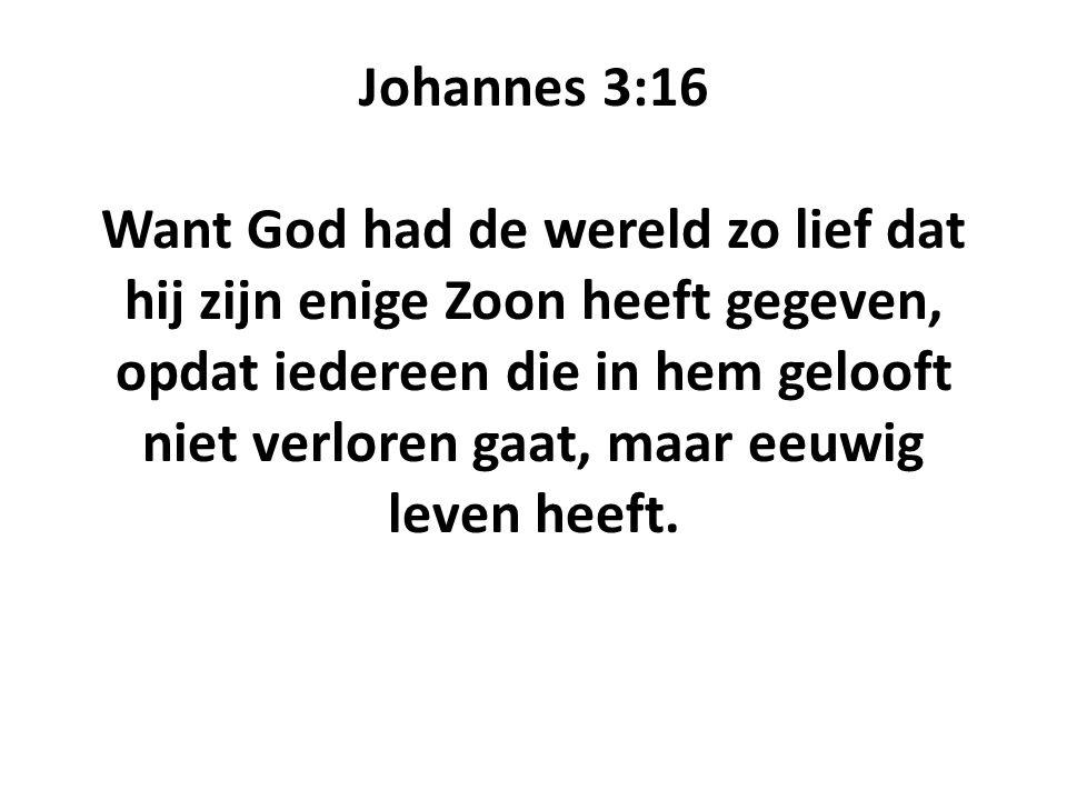 Johannes 3:16 Want God had de wereld zo lief dat hij zijn enige Zoon heeft gegeven, opdat iedereen die in hem gelooft niet verloren gaat, maar eeuwig leven heeft.
