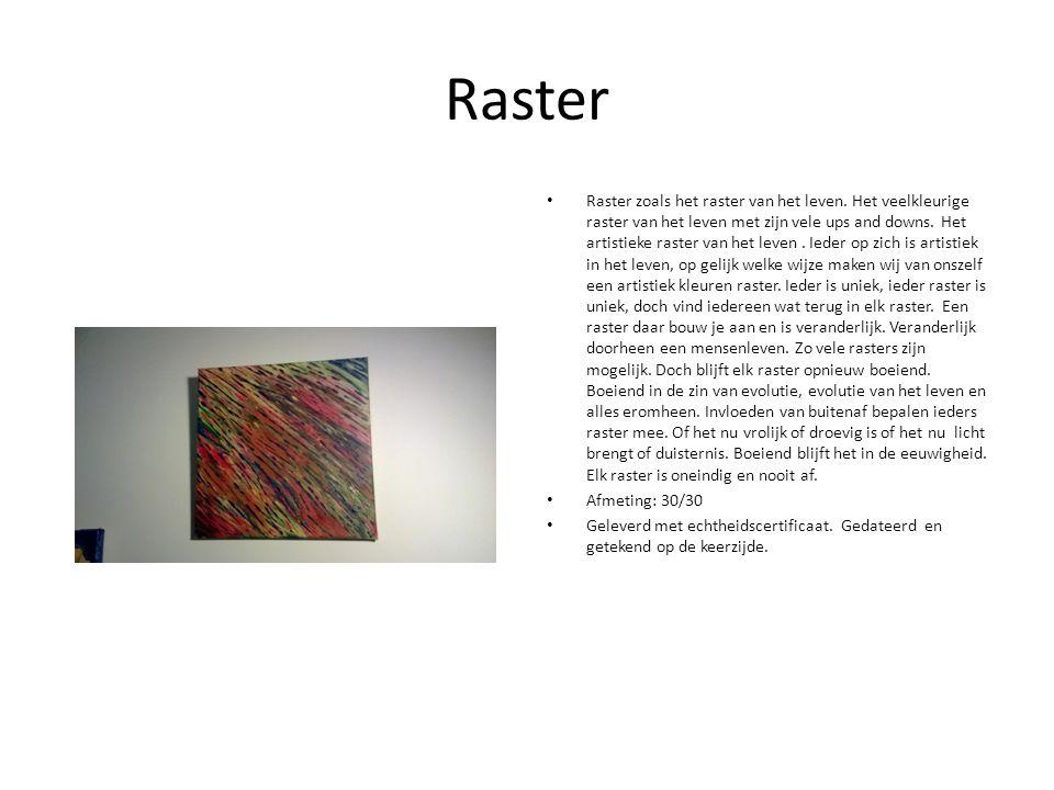 Raster Raster zoals het raster van het leven.