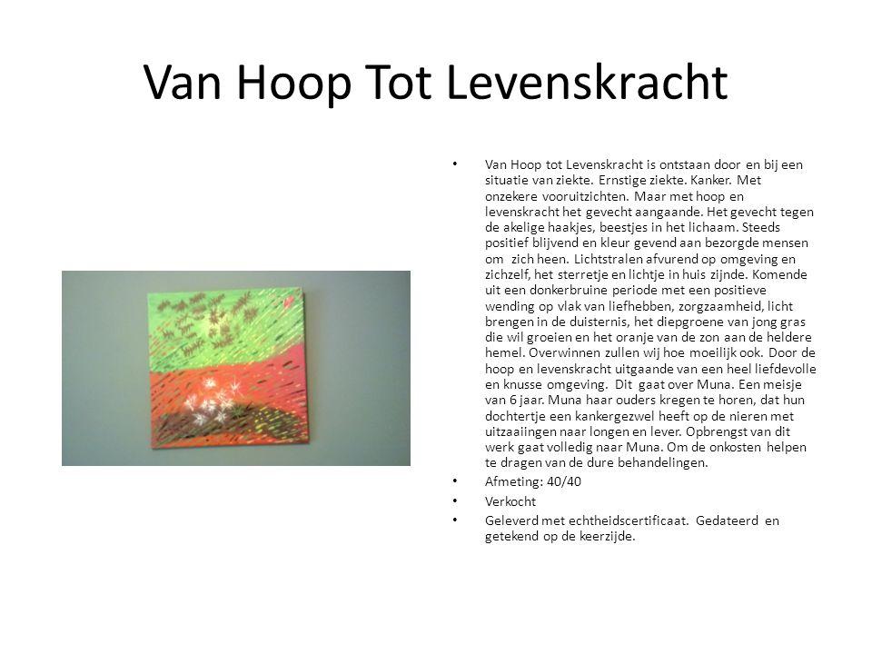 Van Hoop Tot Levenskracht Van Hoop tot Levenskracht is ontstaan door en bij een situatie van ziekte.
