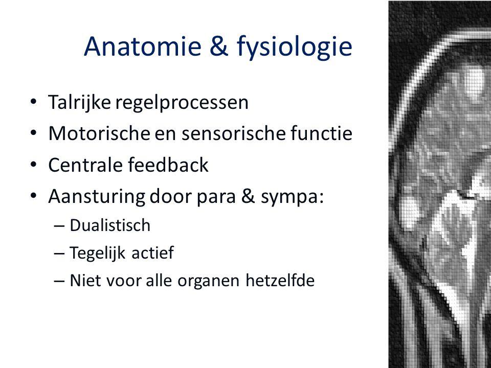 Anatomie & fysiologie Talrijke regelprocessen Motorische en sensorische functie Centrale feedback Aansturing door para & sympa: – Dualistisch – Tegeli