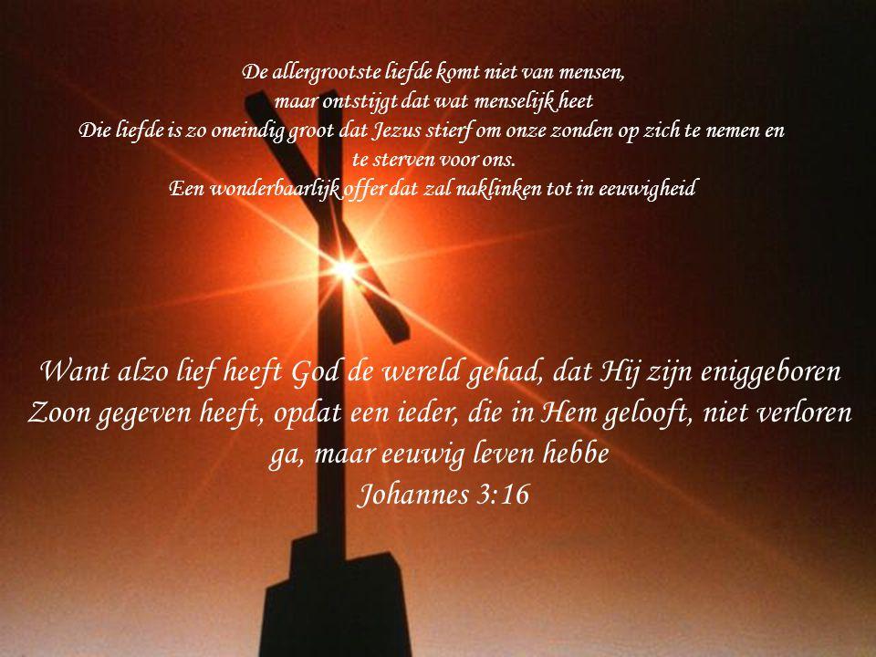 Want alzo lief heeft God de wereld gehad, dat Hij zijn eniggeboren Zoon gegeven heeft, opdat een ieder, die in Hem gelooft, niet verloren ga, maar eeu