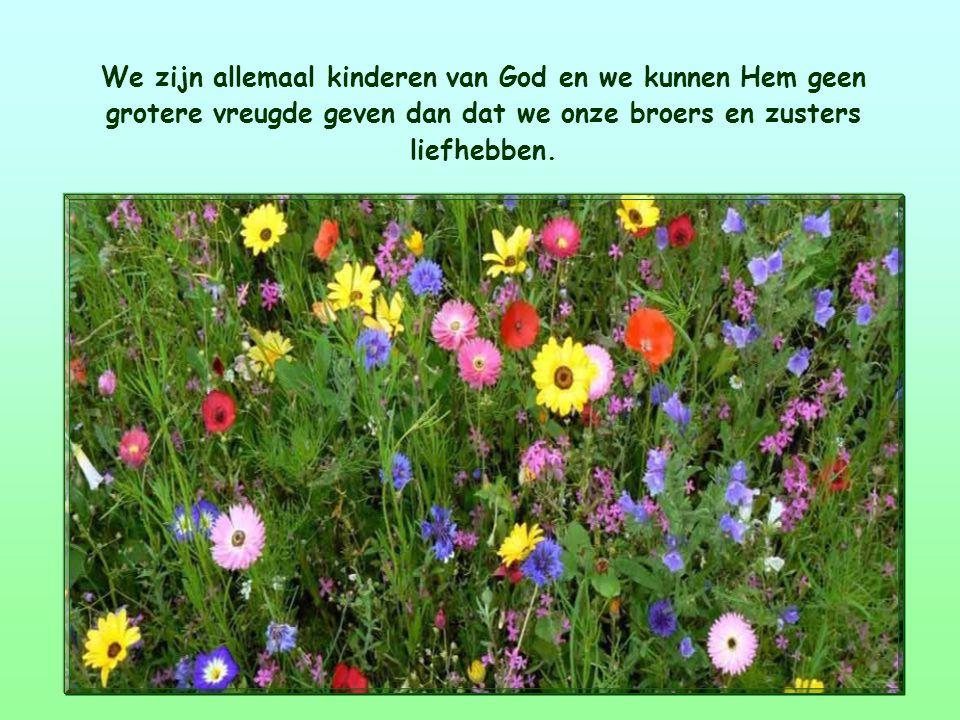 Dit Woord van leven zegt ons dat de liefde voor de medemens de weg is die ons naar God brengt.