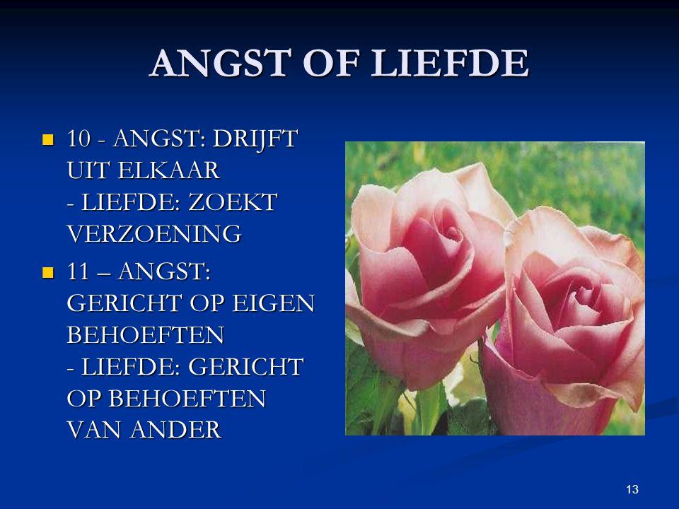 13 ANGST OF LIEFDE 10 - ANGST: DRIJFT UIT ELKAAR - LIEFDE: ZOEKT VERZOENING 10 - ANGST: DRIJFT UIT ELKAAR - LIEFDE: ZOEKT VERZOENING 11 – ANGST: GERICHT OP EIGEN BEHOEFTEN - LIEFDE: GERICHT OP BEHOEFTEN VAN ANDER 11 – ANGST: GERICHT OP EIGEN BEHOEFTEN - LIEFDE: GERICHT OP BEHOEFTEN VAN ANDER