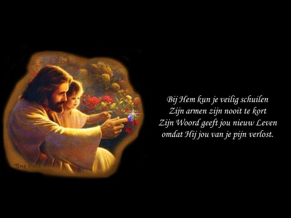 Bij Hem kun je veilig schuilen Zijn armen zijn nooit te kort Zijn Woord geeft jou nieuw Leven omdat Hij jou van je pijn verlost.