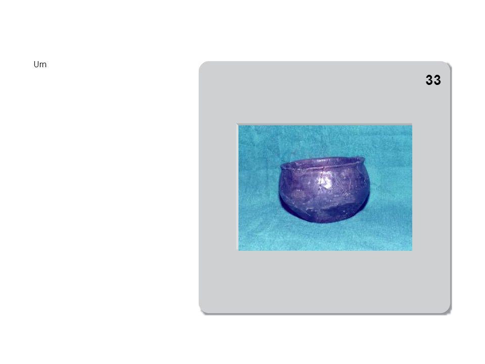 De verzameling urnen.Eén urn was stuk en is met gips hersteld.
