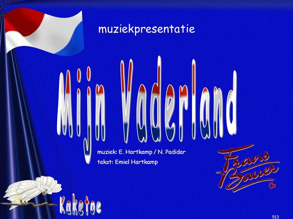 muziekpresentatie muziek: E. Hartkamp / N. Padidar tekst: Emiel Hartkamp 513
