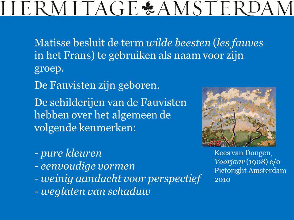 Matisse besluit de term wilde beesten (les fauves in het Frans) te gebruiken als naam voor zijn groep. De Fauvisten zijn geboren. De schilderijen van