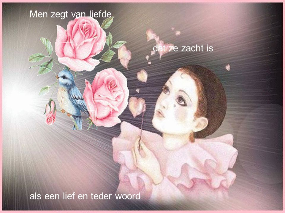 De roos Ann Christy