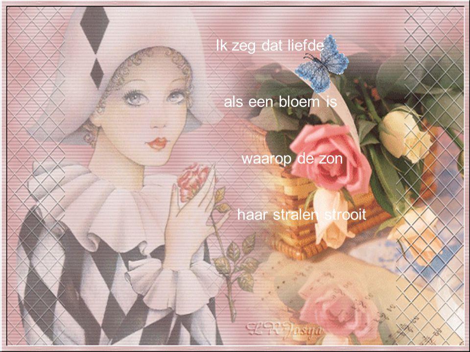 Ik zeg dat liefde als een bloem is waarop de zon haar stralen strooit