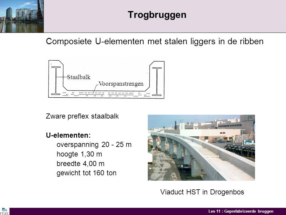 Les 11 : Geprefabriceerde bruggen Bruggen met gebogen intrados Prefabliggers met gebogen langsprofiel Rechthoekige liggers met gebogen langsdoorsnede